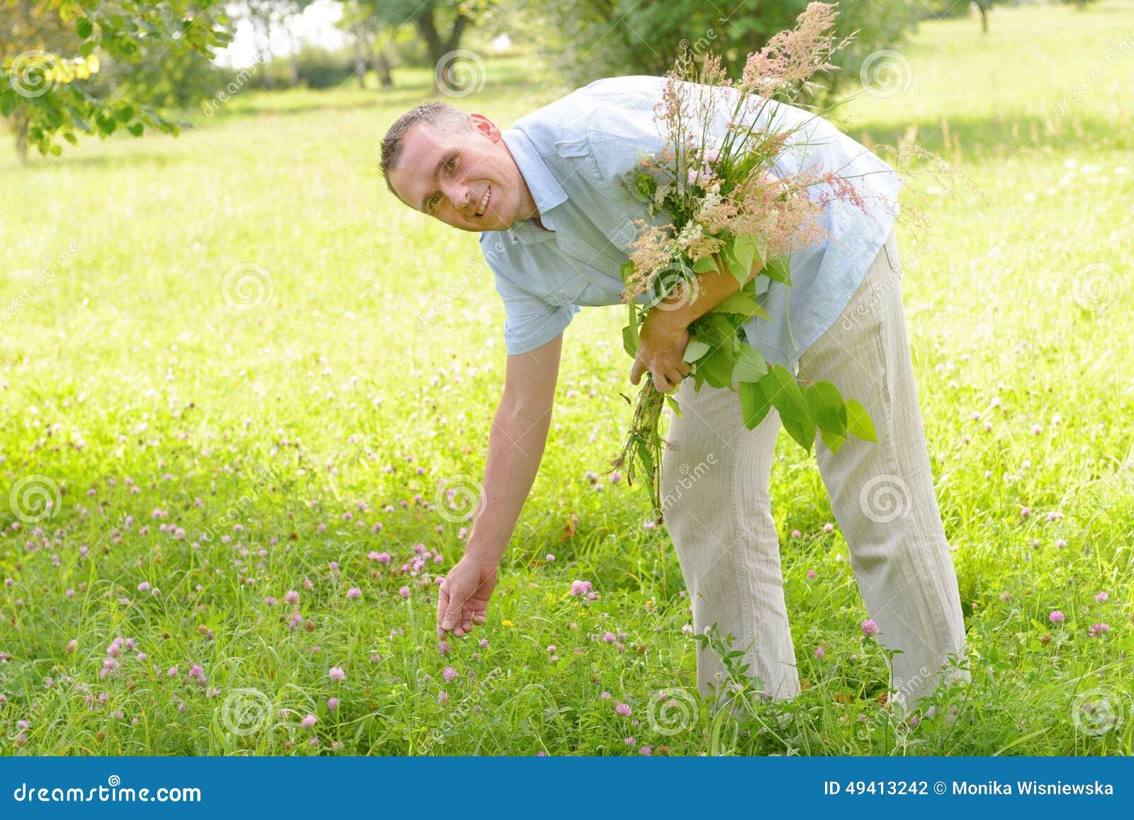 Download Herbalist stockfoto. Bild von kräuter, hell, blume, abschluß - 49413242