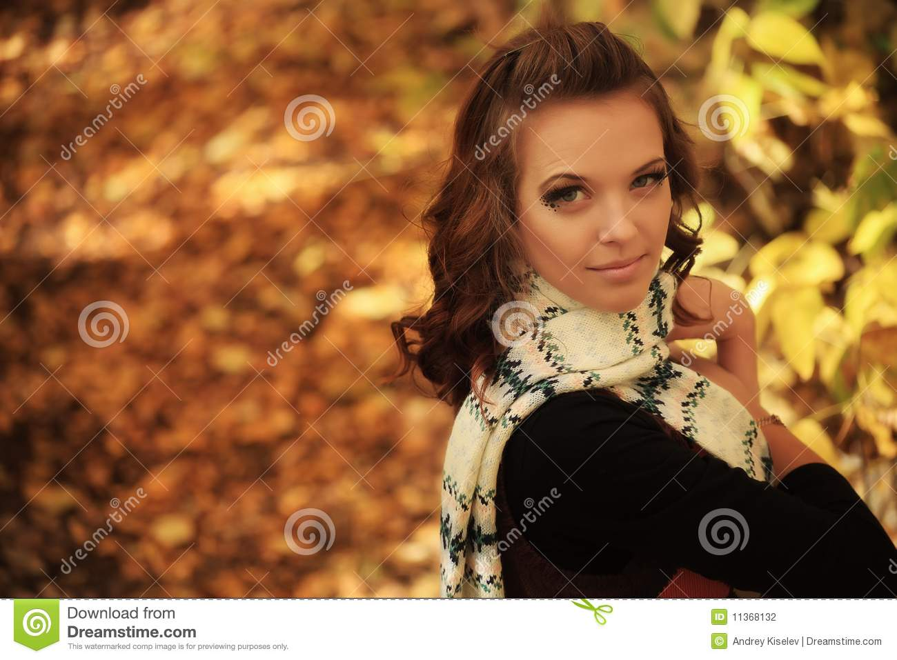 Herbarium stock photography image 11368132 - Model herbarium ...