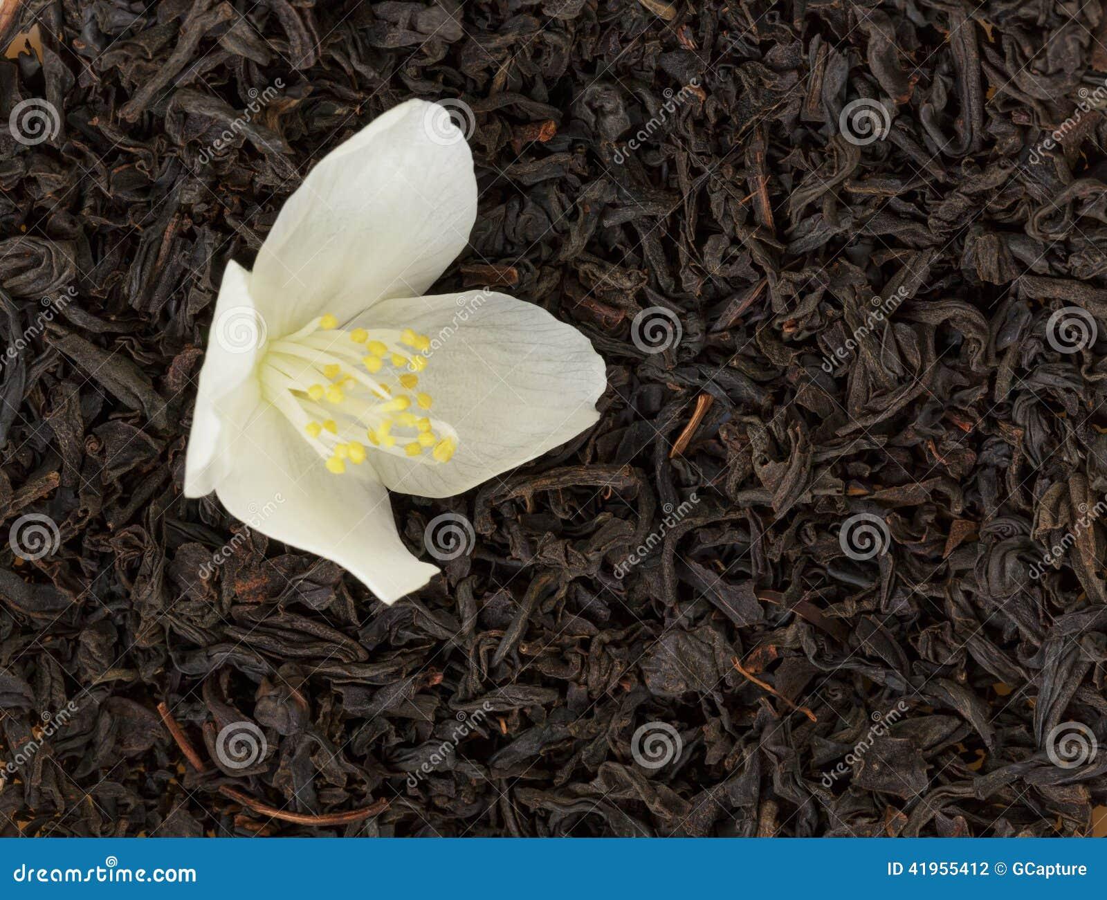 Herbata z jaśminowym kwiatem