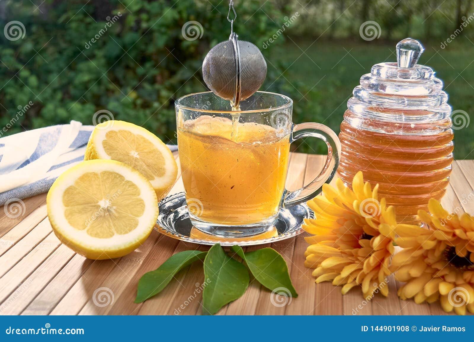 Herbaty filtrowa piłka spada w szkło gorąca woda