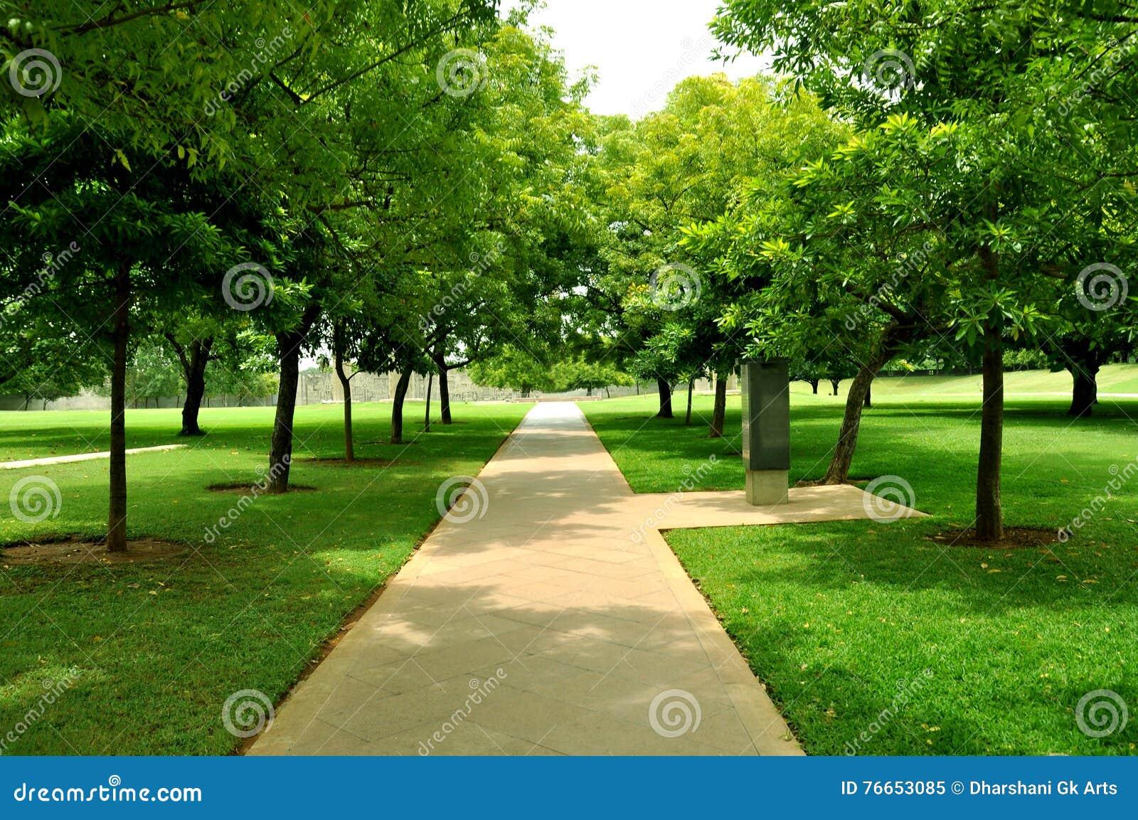 Herbe Avec Le Chemin De Jardin Image Stock Image Du