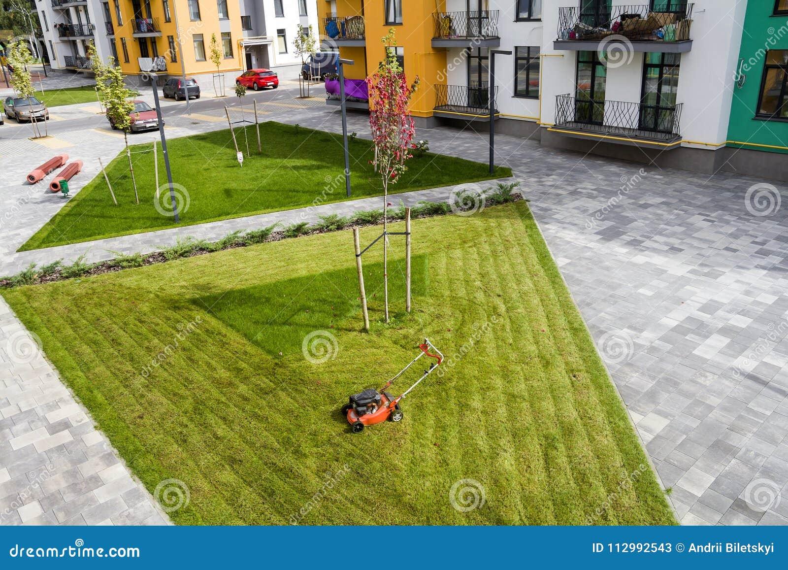 Herbe de coupe de tondeuse à gazon sur le champ vert dans la cour près du bâtiment résidentiel d appartement Outil de fauchage de