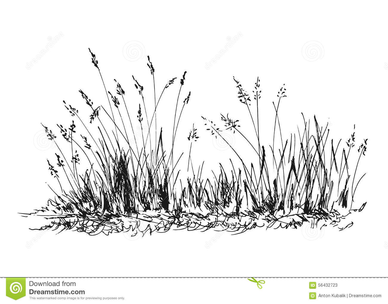 Herbe De Croquis De Main Illustration De Vecteur