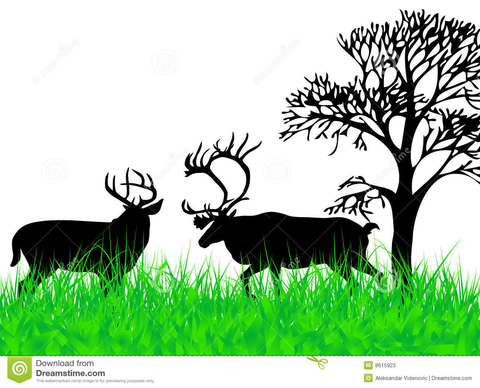 Herbe de deers