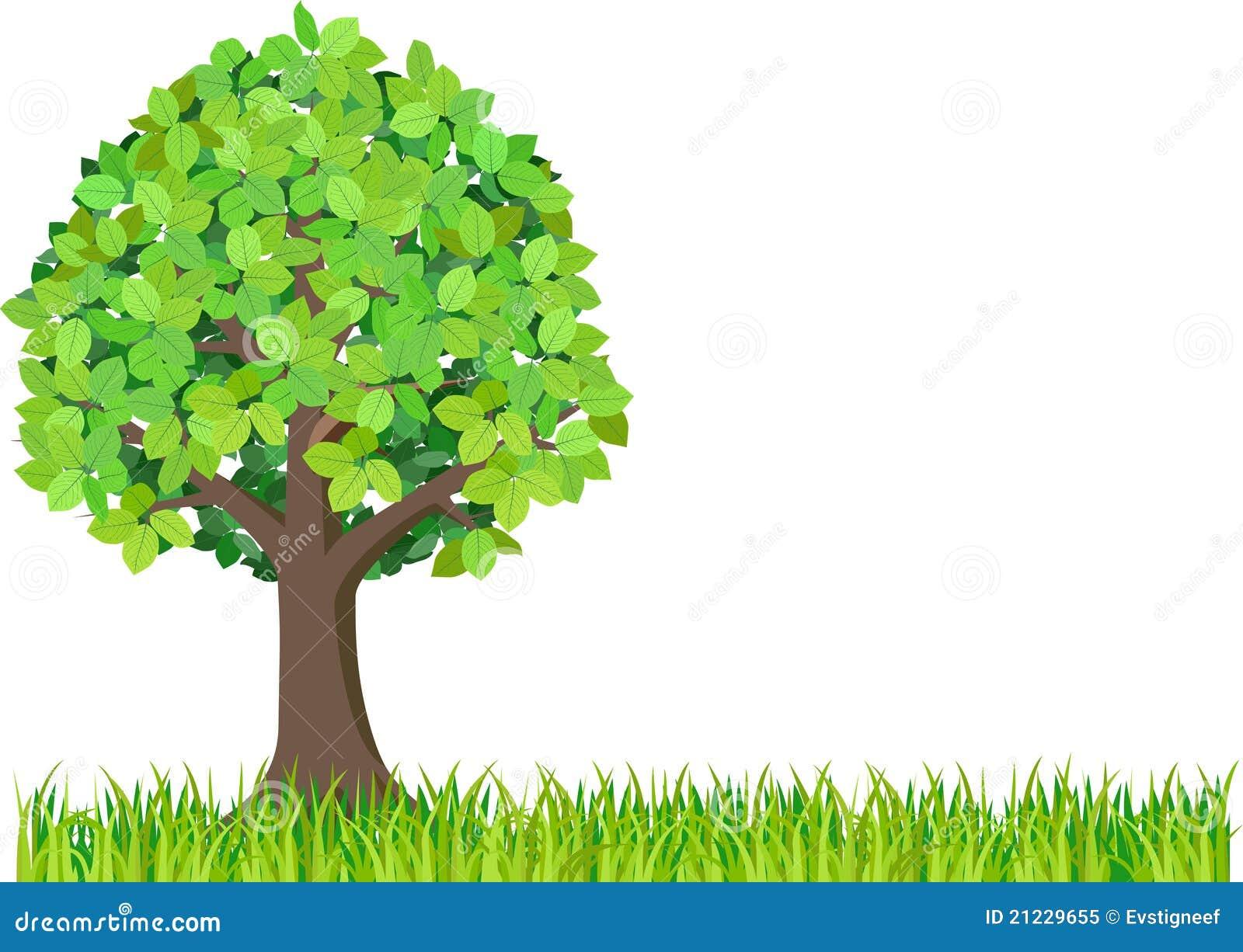 herbe et arbre vert d isolement sur le fond blanc clipart for garage sale clip art for yard sale flyer