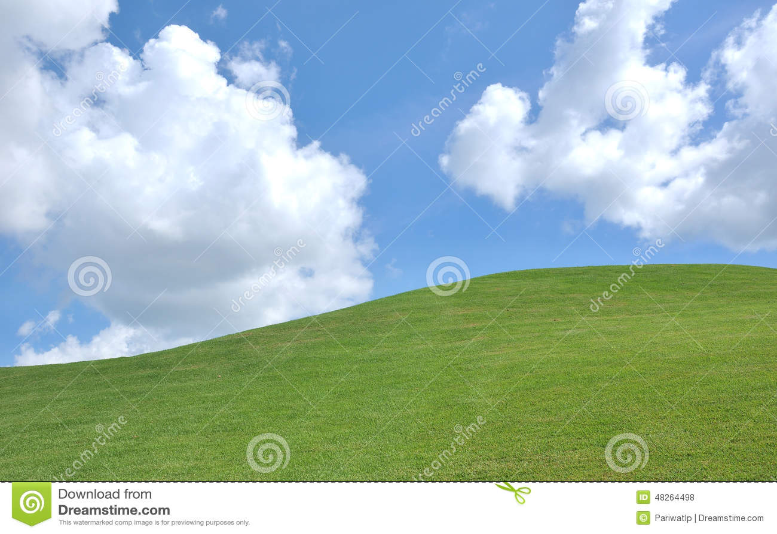 Herbe et ciel frais