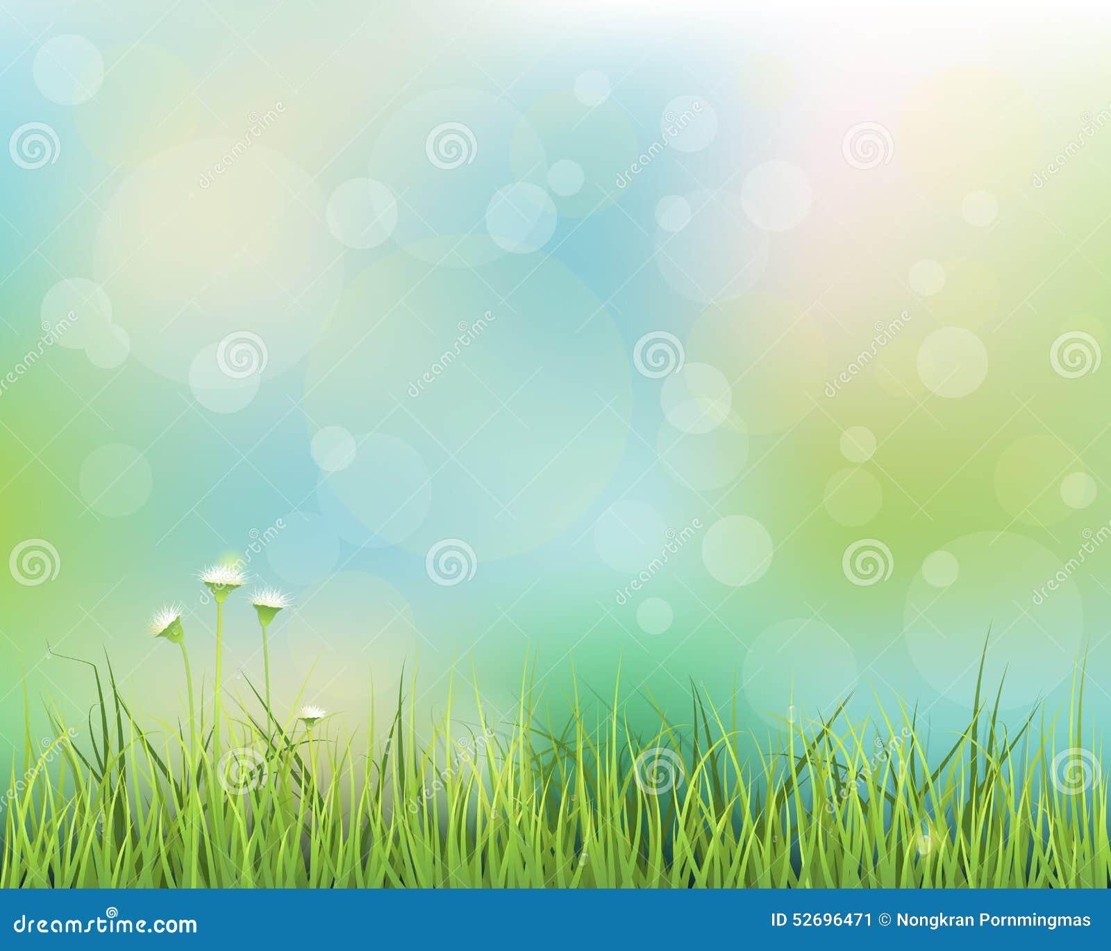 Herbe verte avec peu de fond de fleur blanche