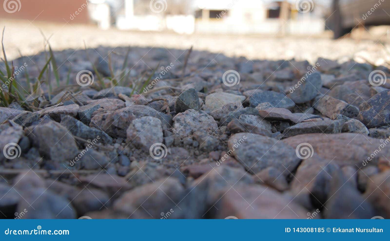 Herbe verte de petite petite pierre en pierre