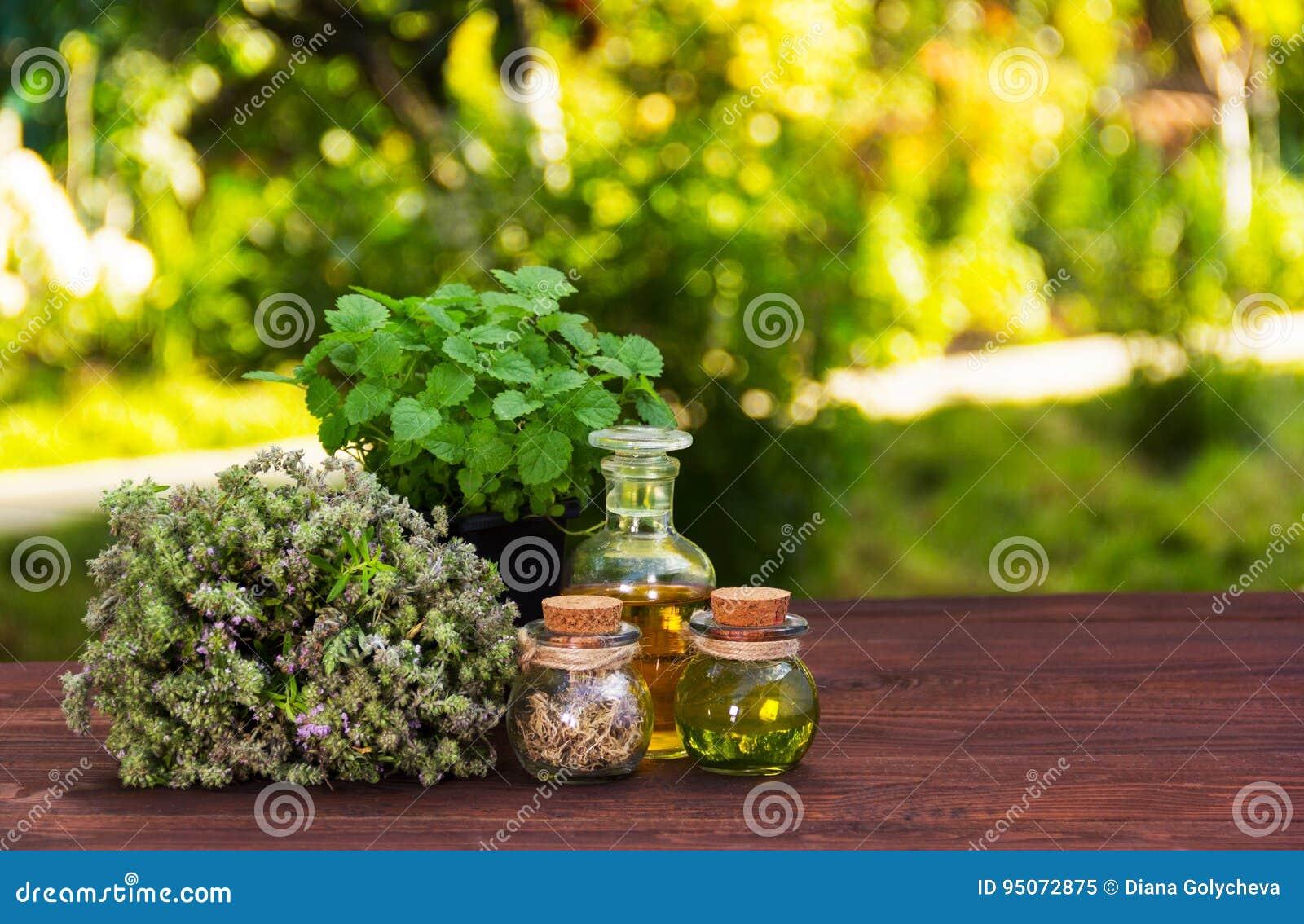 Herbes aromatiques et huiles essentielles Produits de beauté normaux Médecines normales Menthe poivrée et thym parfumé
