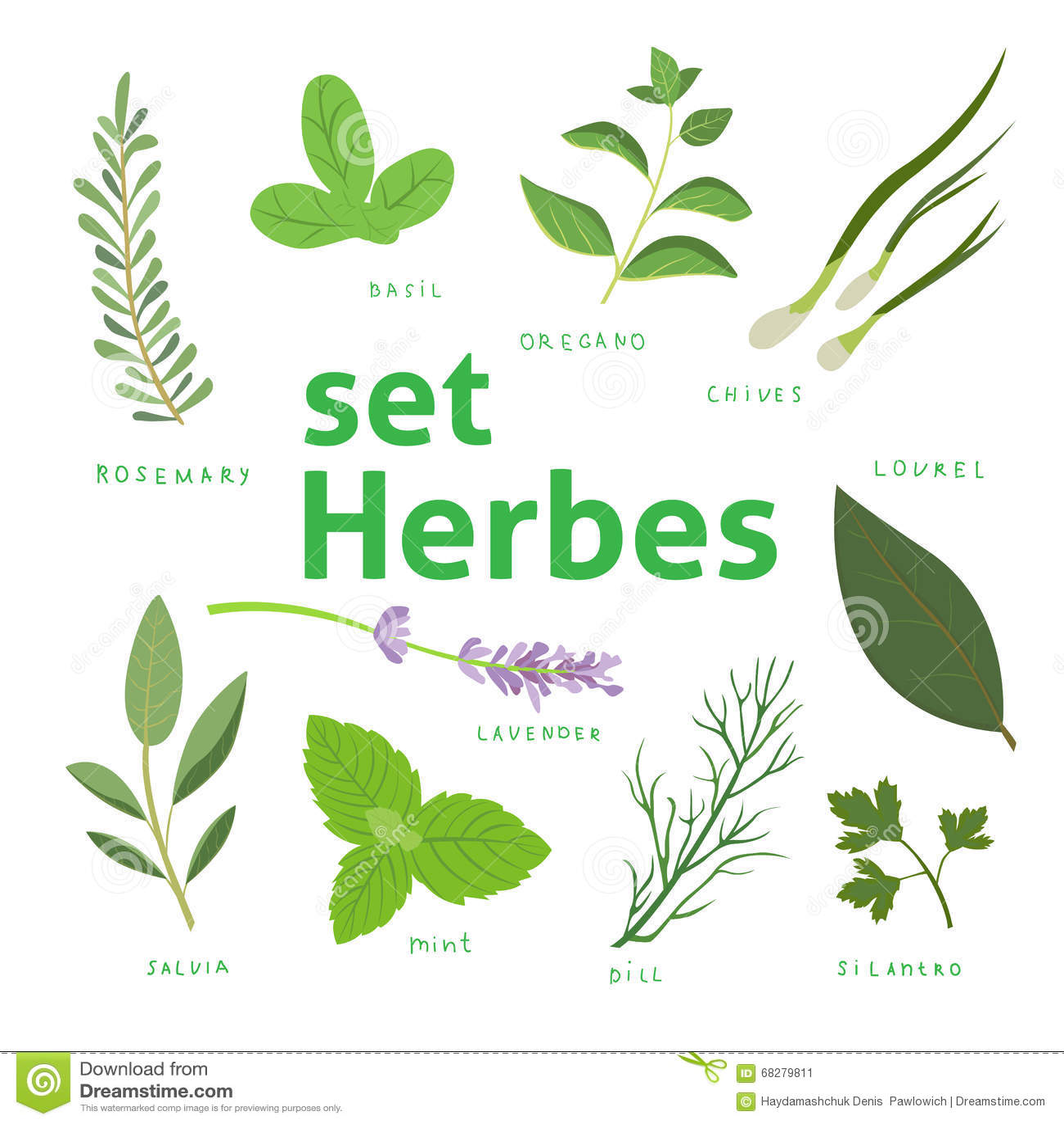 herbes aromatiques r gl es herbes fra ches et pices r gl es illustration de vecteur env 10. Black Bedroom Furniture Sets. Home Design Ideas