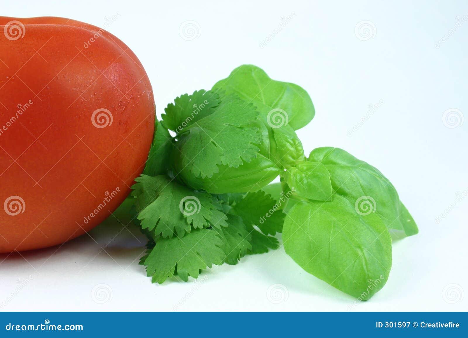 Herbes et tomate