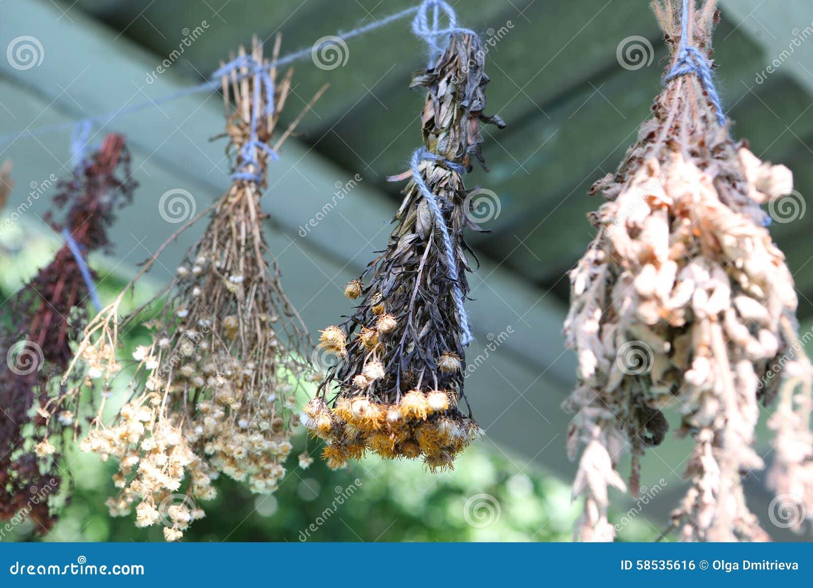 Herbes sèches