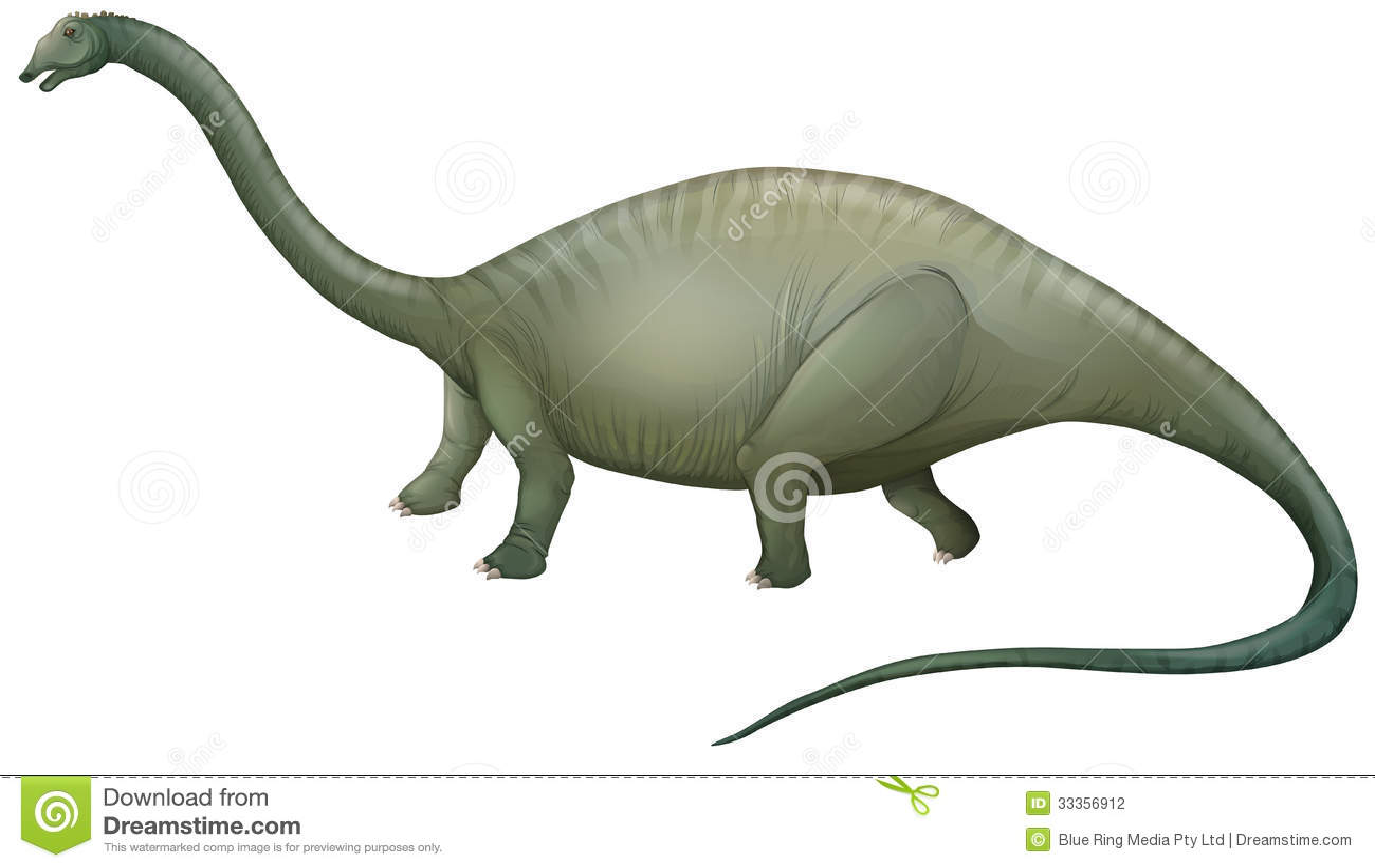 Displaying 20 gt images for herbivore dinosaurs herbivore teeth