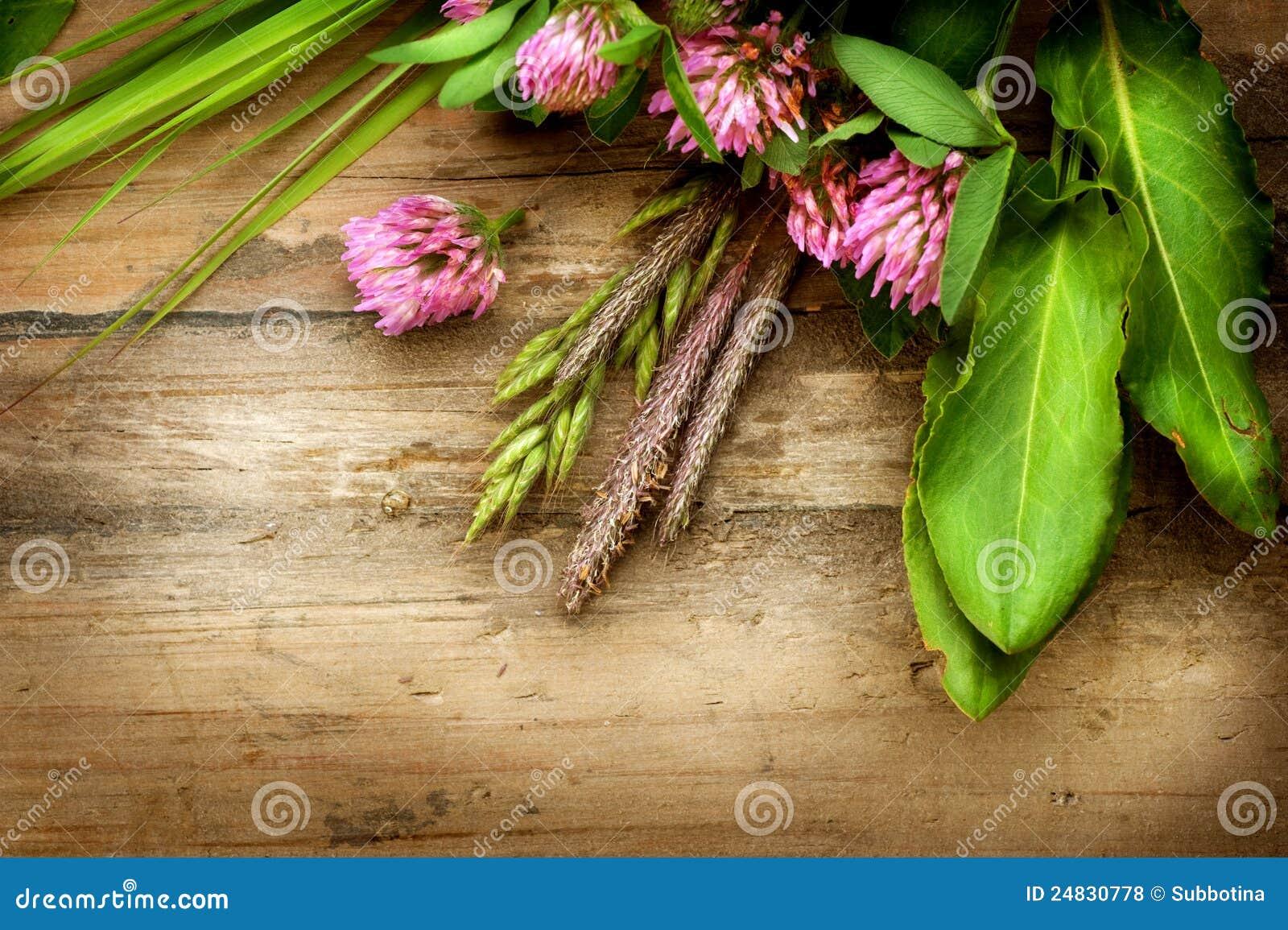 Herbs over Wood
