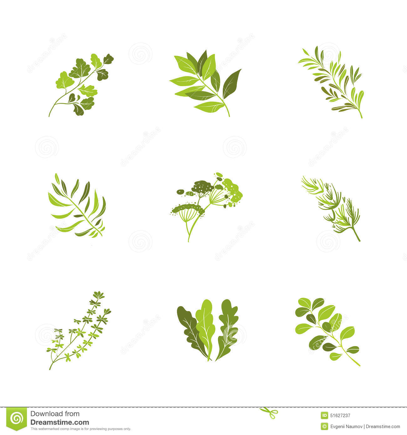 Herbs And Spices Icons Cartoon Vector Stock Image