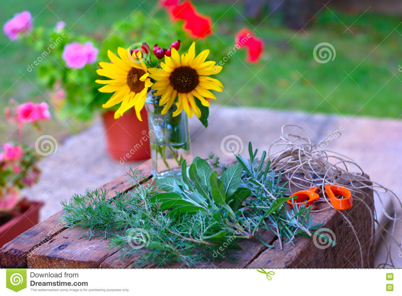 Herbs And Sunflowers