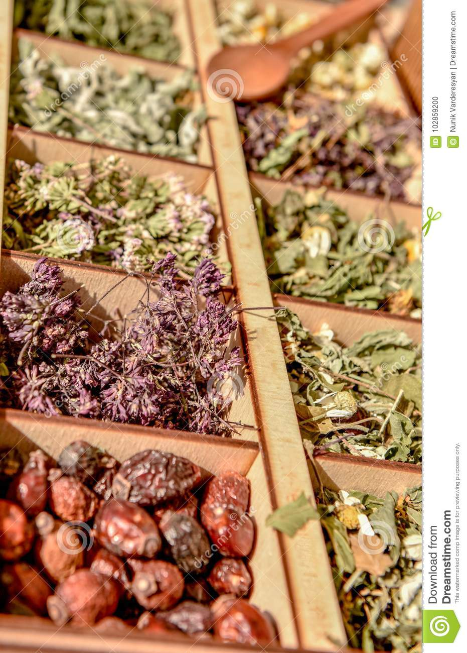Herbs for tea . Herbs and tea collection .
