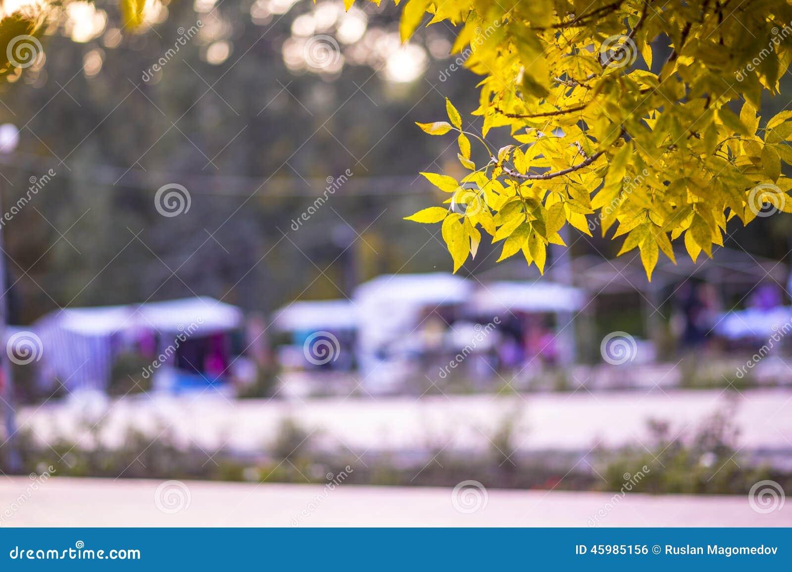 Herbst angemessen