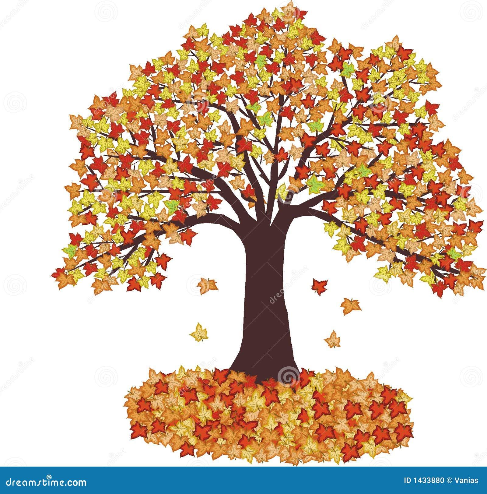 HerbstBlätter Und Baum  Vektor Stockfoto  Bild 1433880