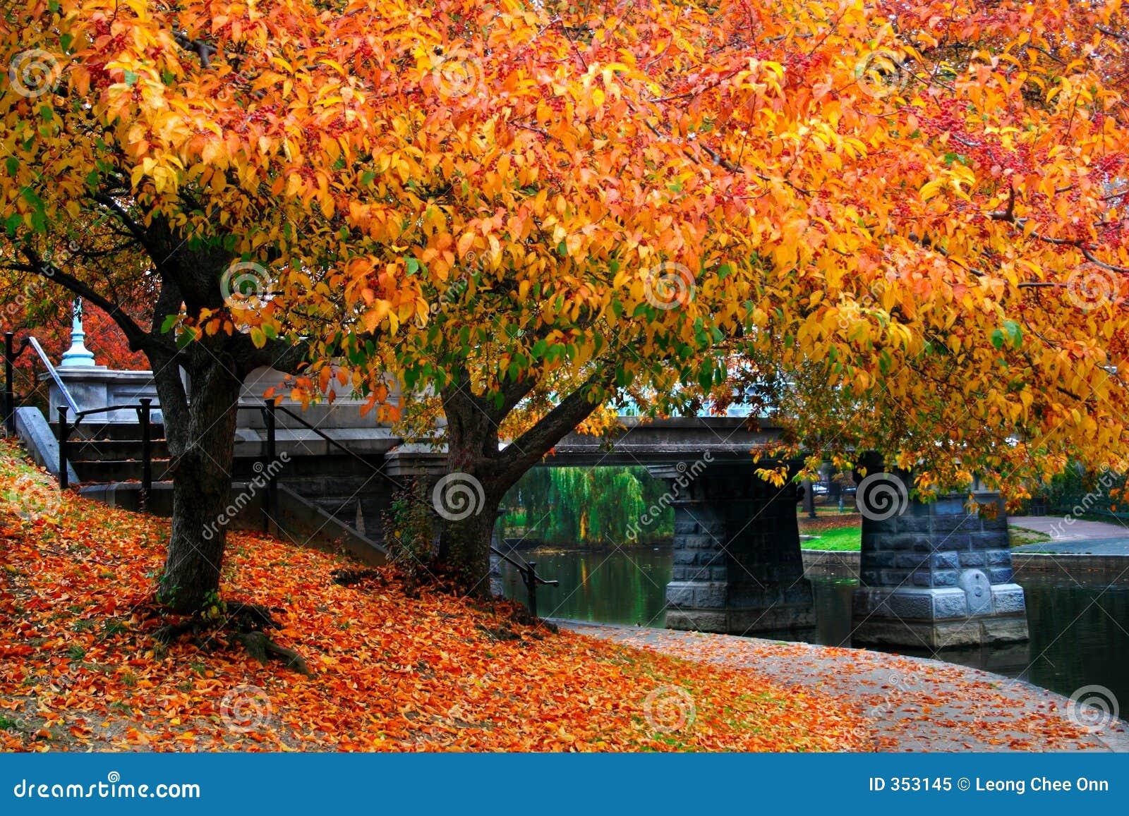 Herbst in Boston