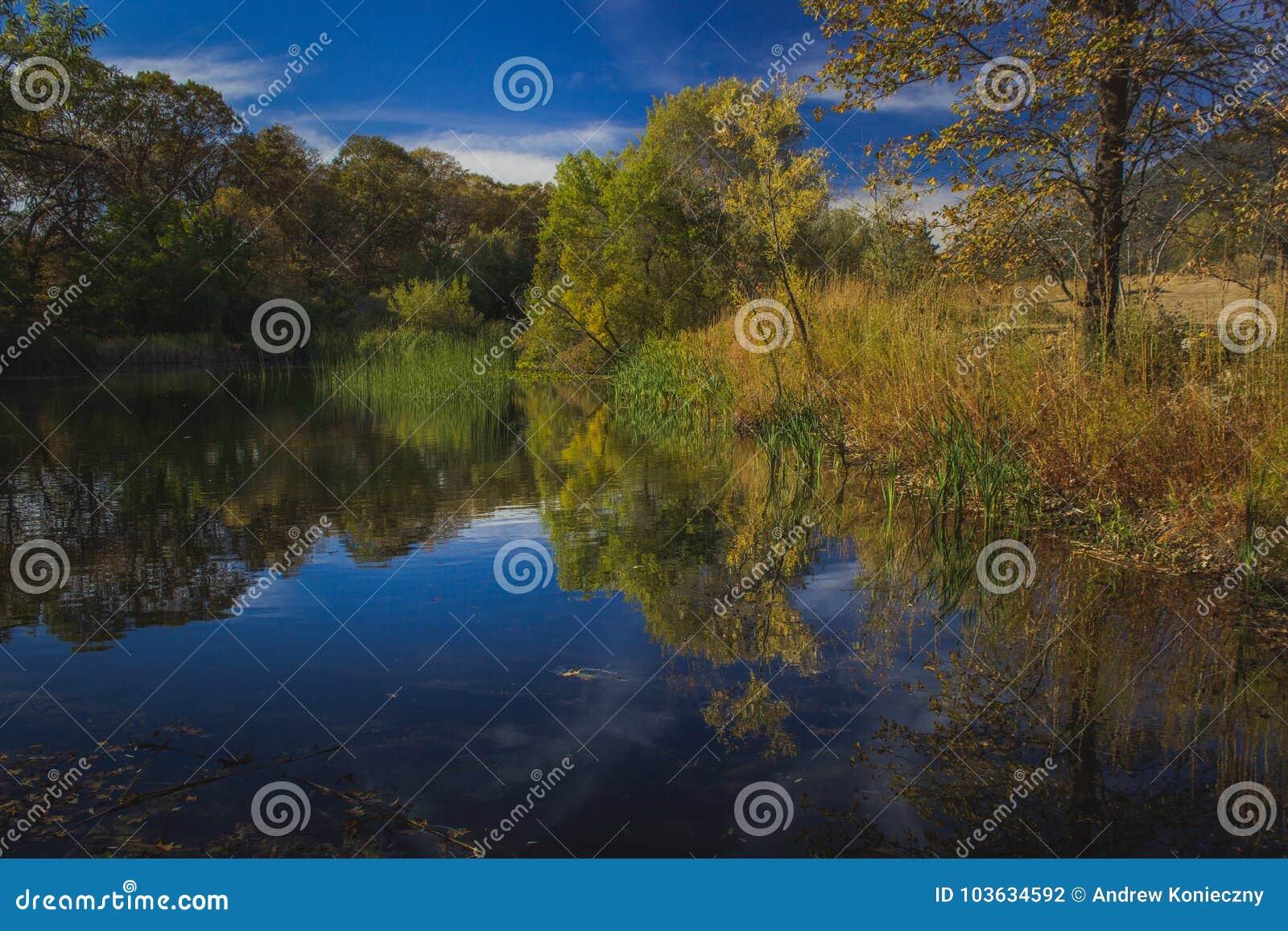 Herbst an der Eiche Glen Preserve