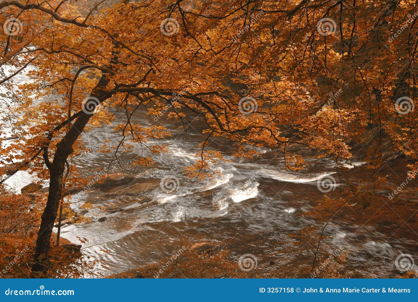 Herbst durch einen Fluss