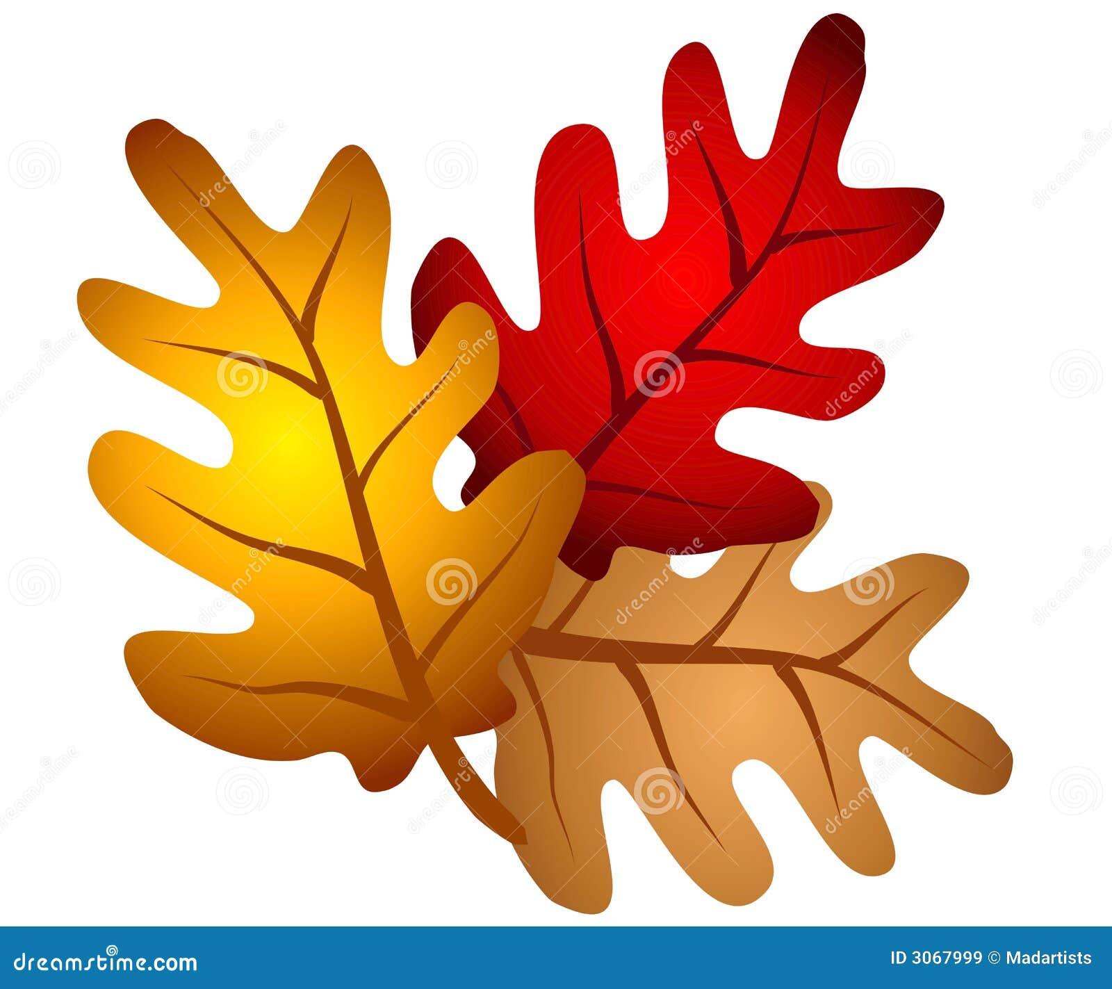 Herbst Eichen Baum Verlässt Clipart Stock Abbildung Illustration