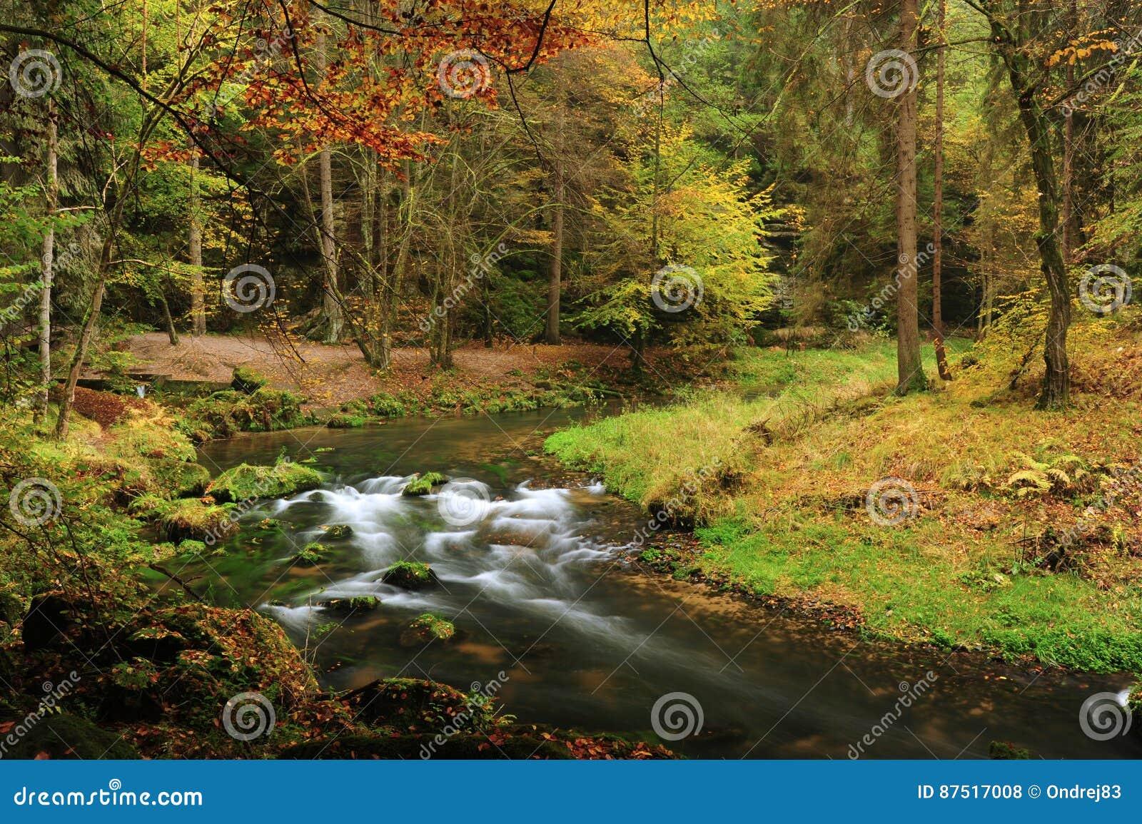 Herbst färbt Fluss