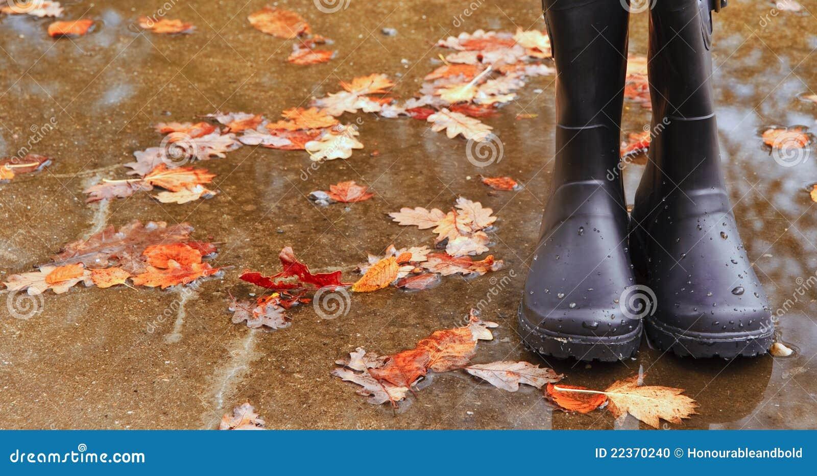 Herbst-Fallkonzept Wellington lädt Blätter auf