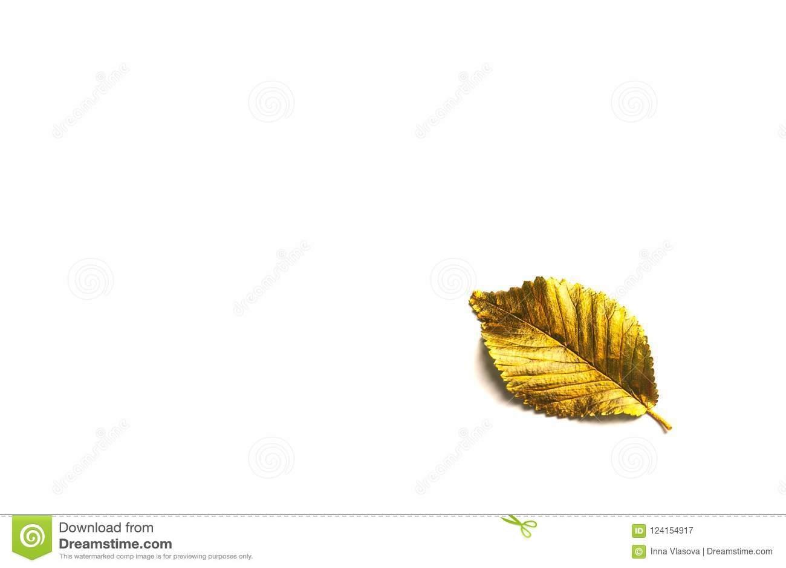 Herbst-goldenes Blatt mit Kopienraum