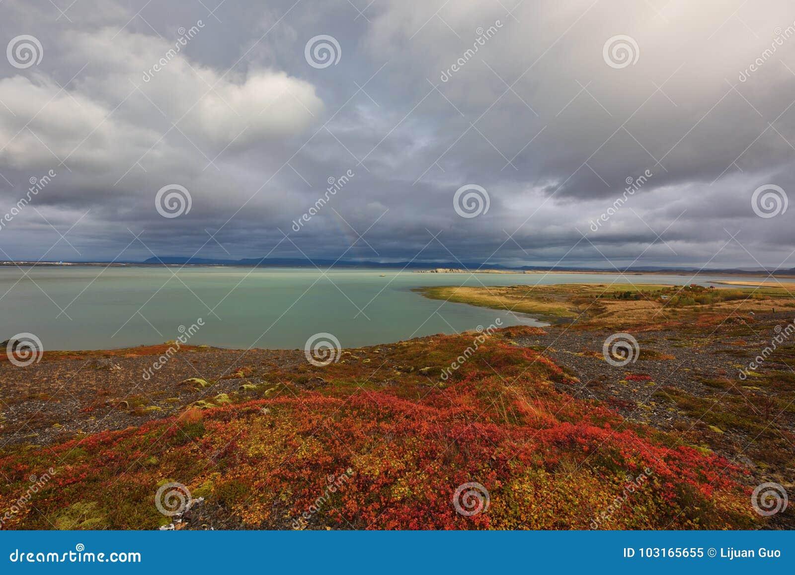 Herbst In Island Stockbild Bild Von Regen Arktisch 103165655