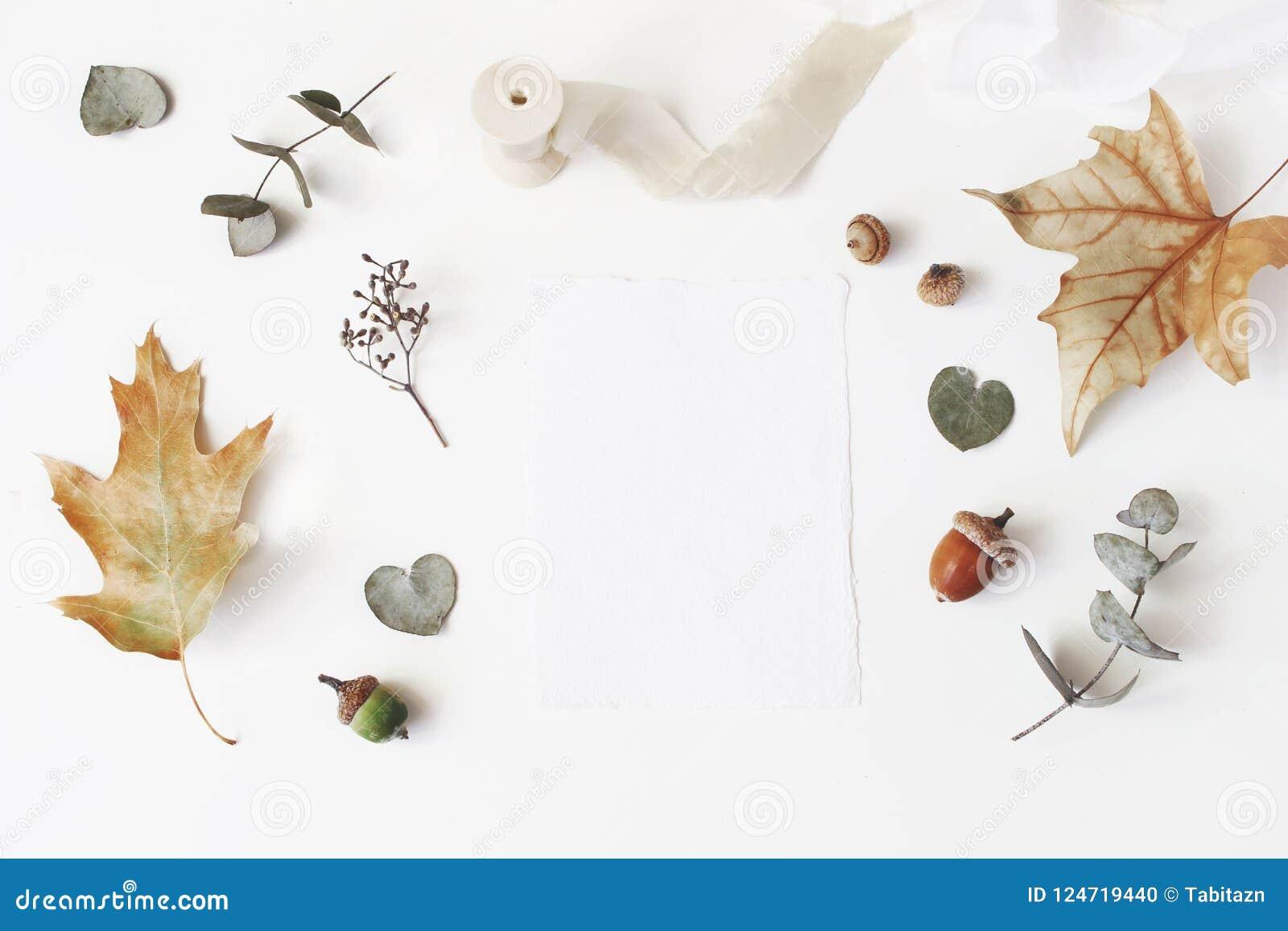 Herbst redete Foto auf Lager an BRIEFPAPIER-Modellszene der weiblichen Hochzeit Tischplattenmit leerer Grußkarte, trockener Eukal