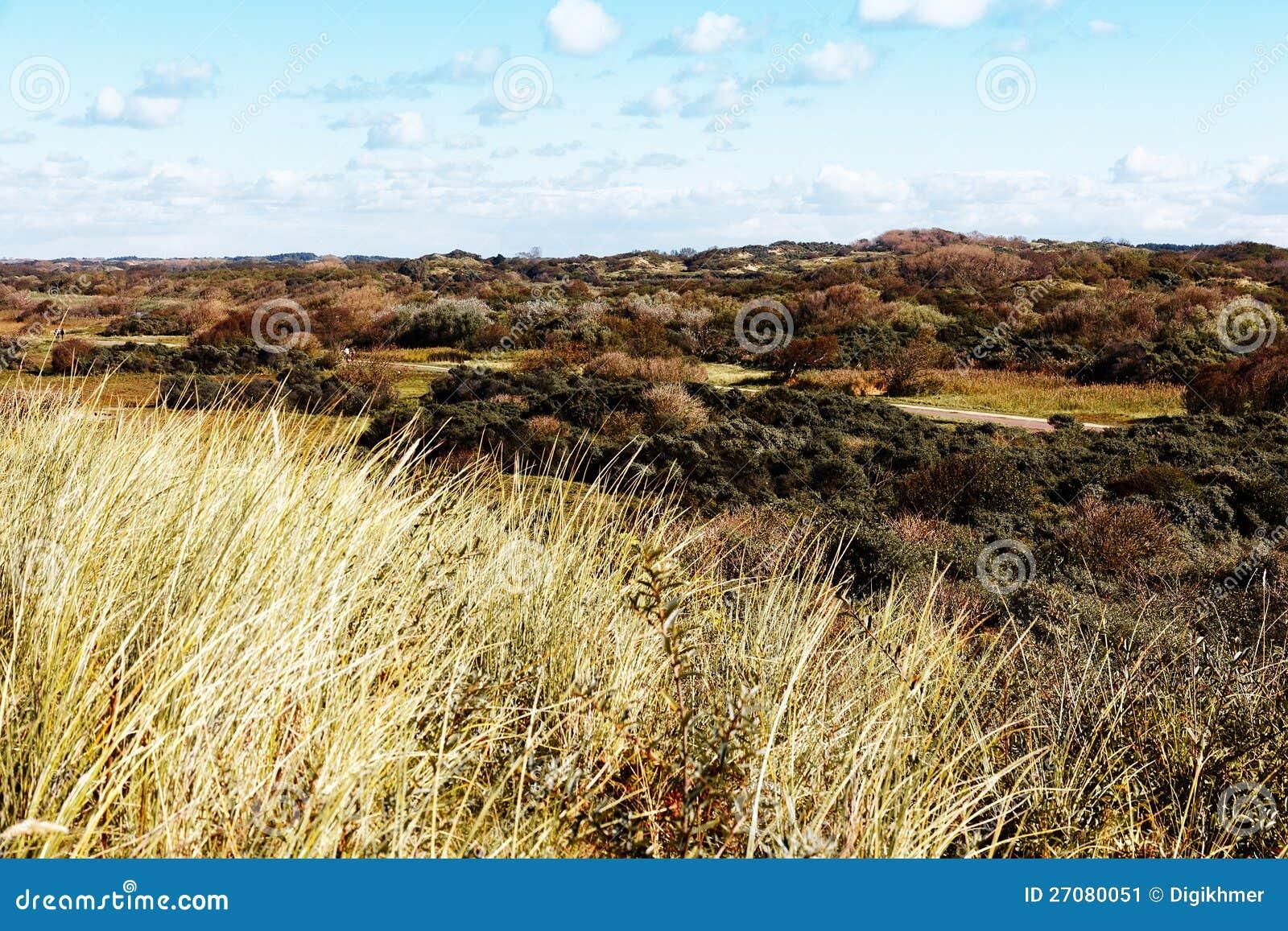 Herbst-Sanddüne