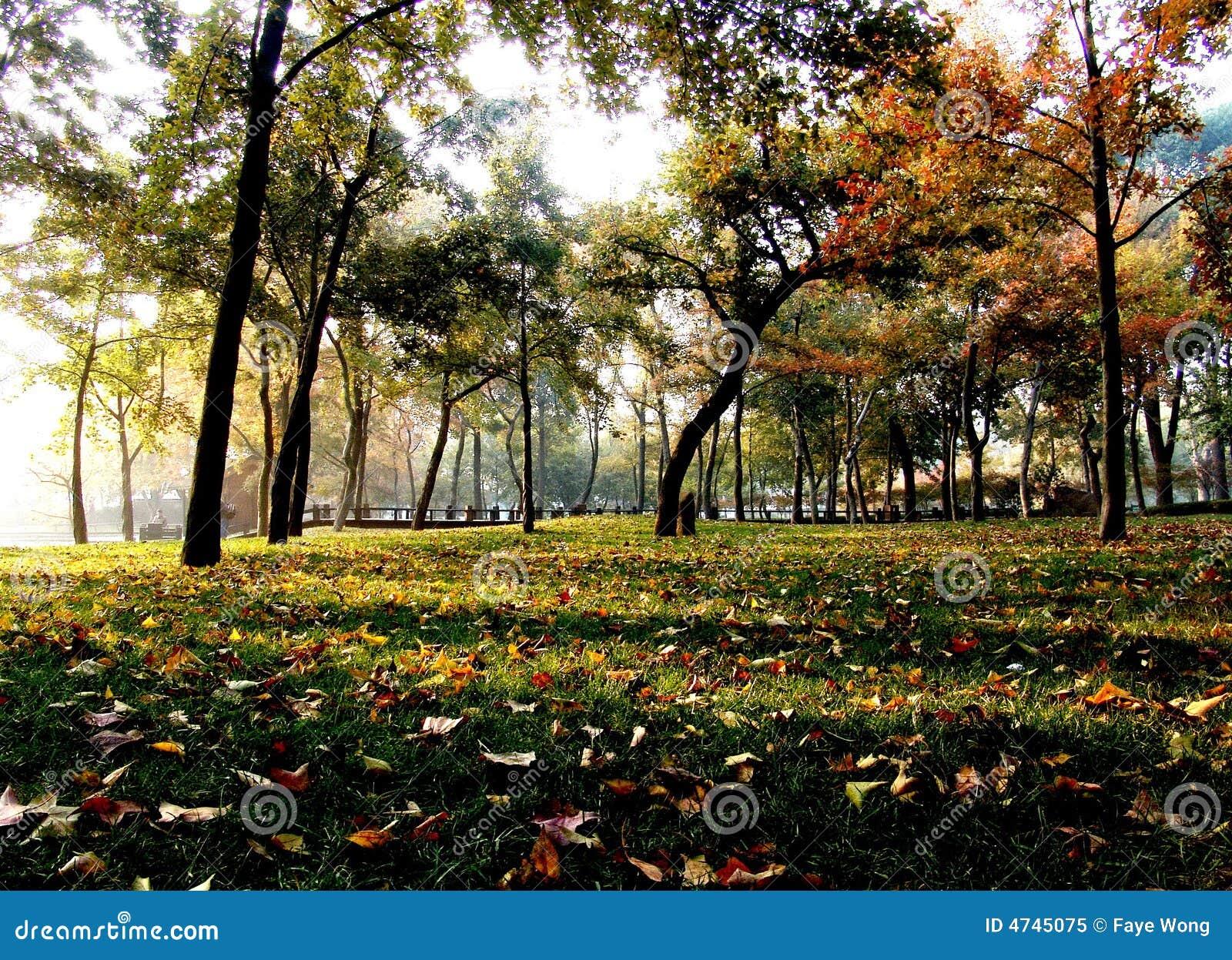 Herbst Suzhou