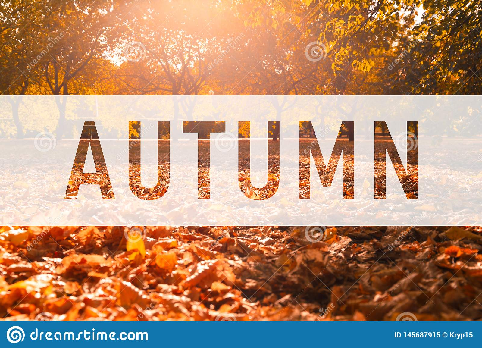 Herbst, Text auf bunten Fallblättern grüßend