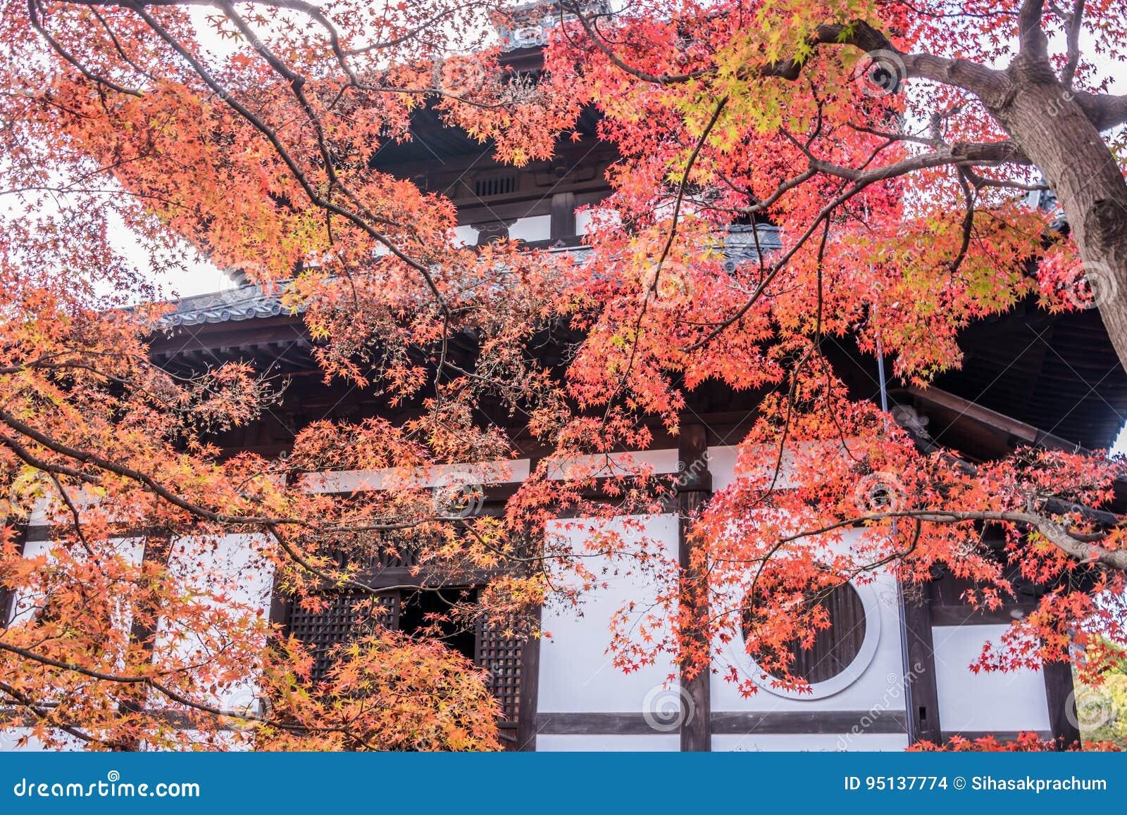 Herbst an tofukuji Tempel