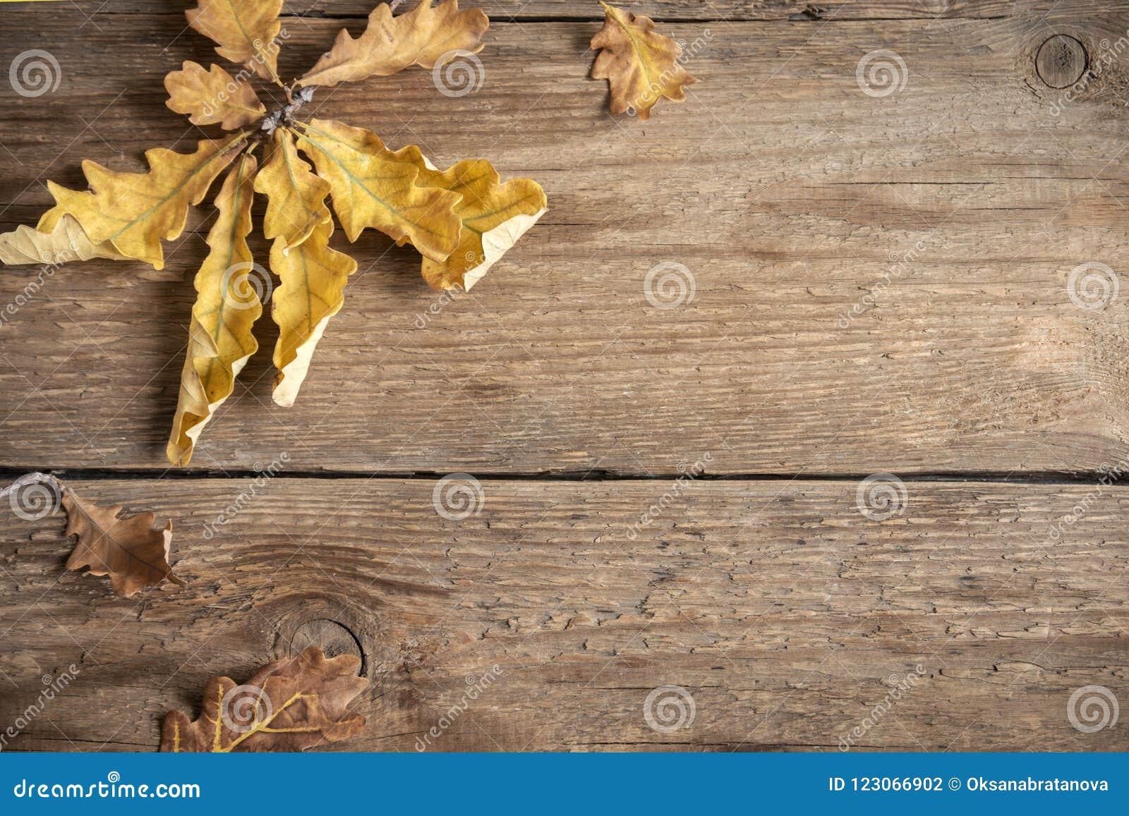 Herbst Trocknen Sie Blätter auf hölzernem