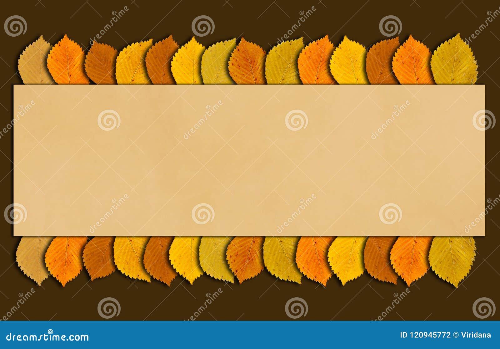 Herbst- und Danksagungsrahmen mit Herbst färbte Blätter Abfallzeithintergrund mit Kopienraum für Ihren Text