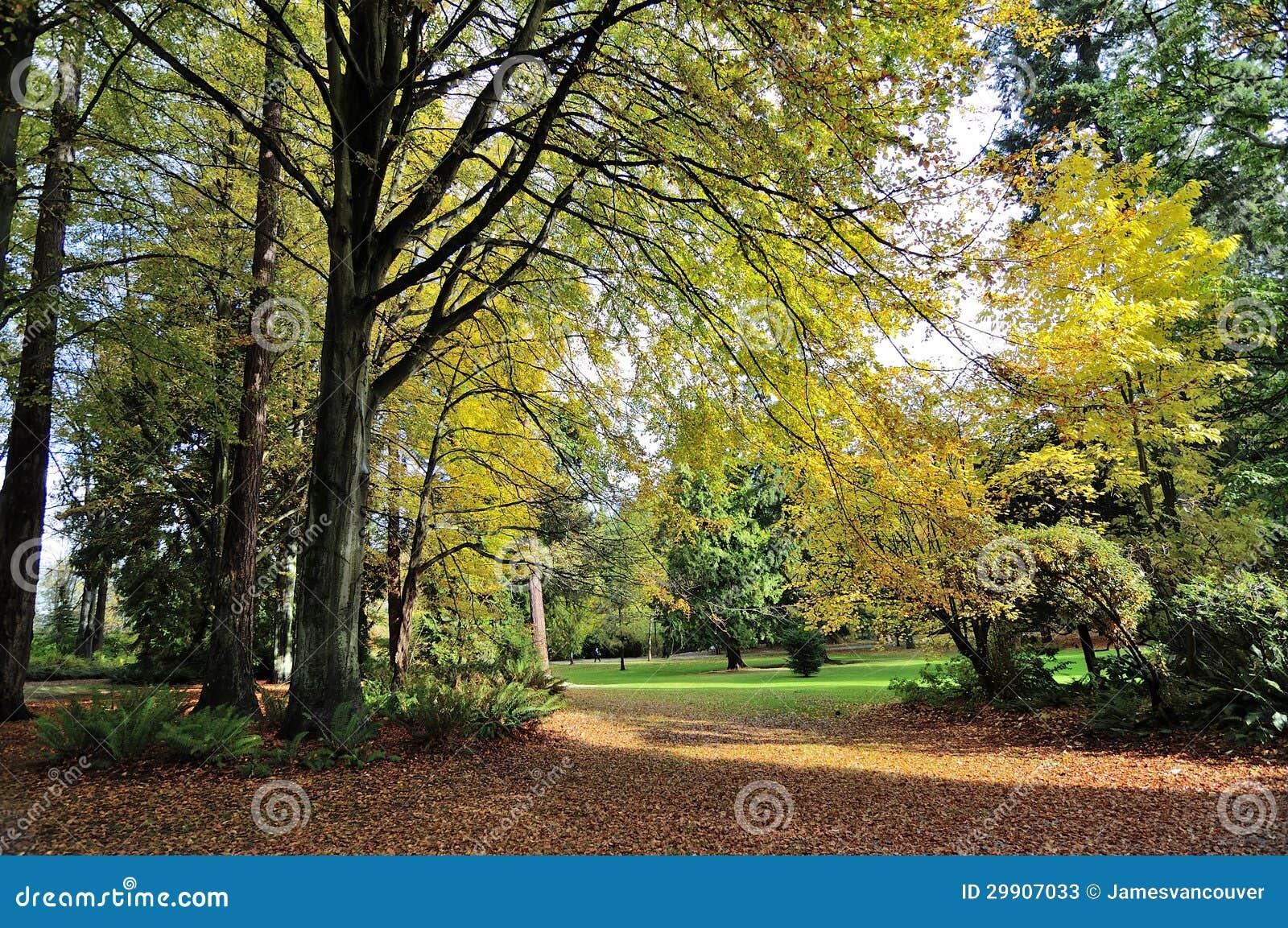 Herbstansicht von Stanley-Park