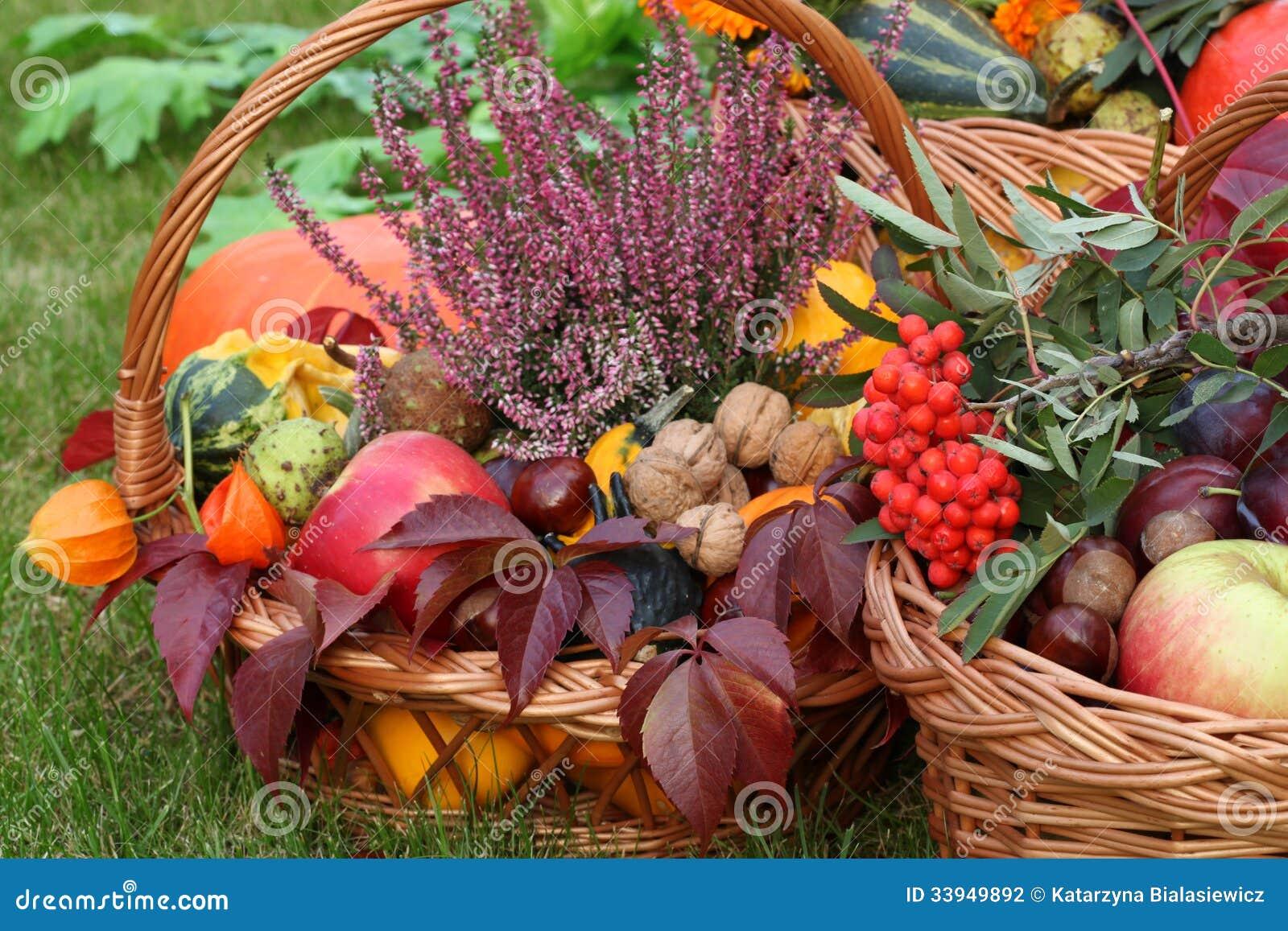 Herbstdekorationen stockfoto bild von bestandteil bunt for Herfst decoratie