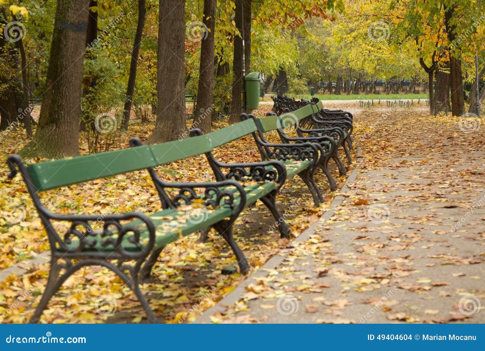 Download Herbstgasse im Park stockfoto. Bild von schön, herbstlich - 49404604