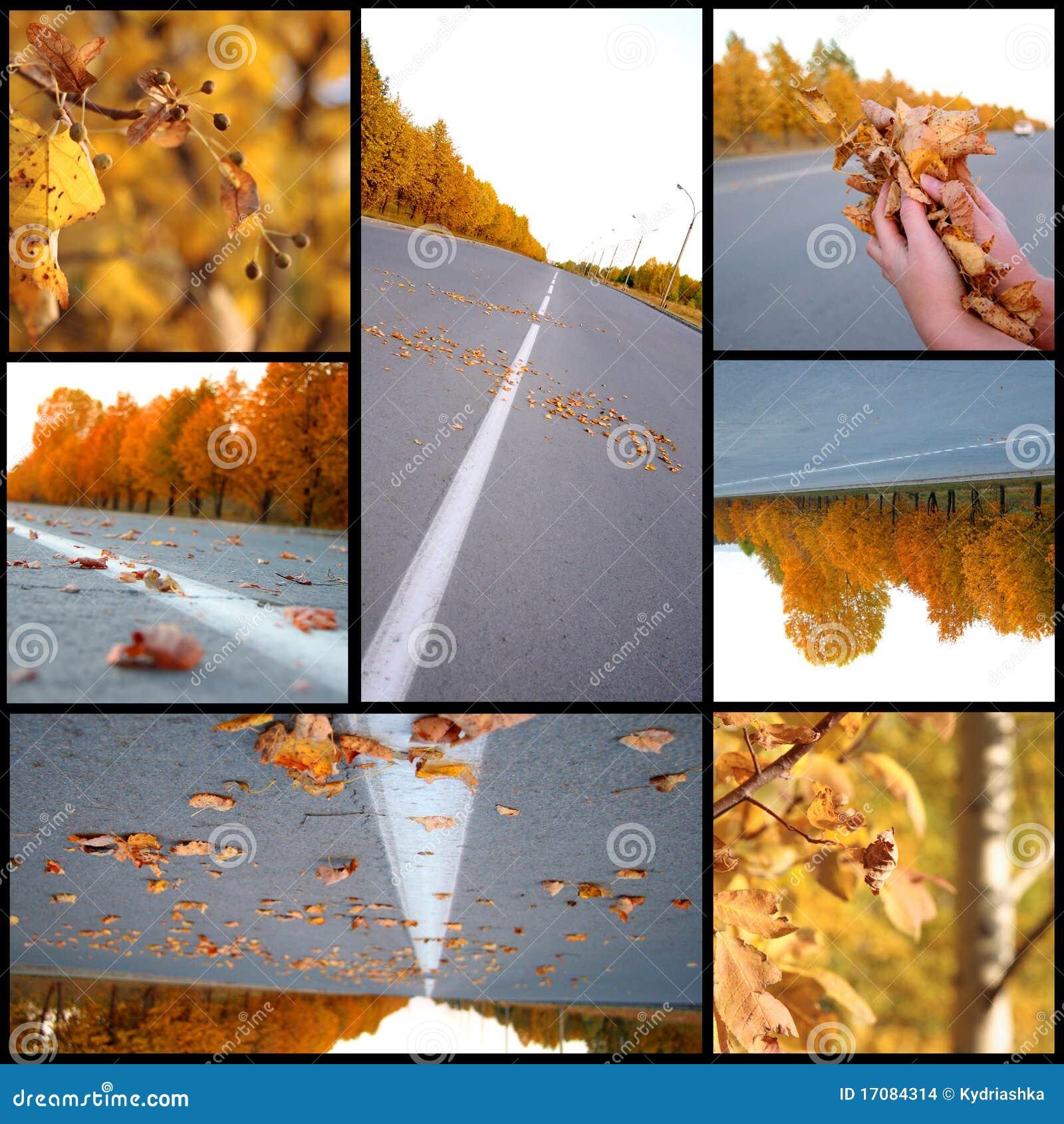 Herbstjahreszeit schön, Collage