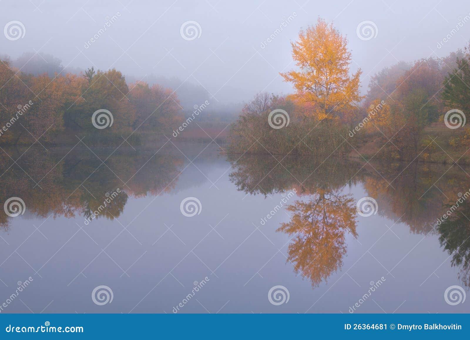Herbstlandschaft mit gelbem Baum
