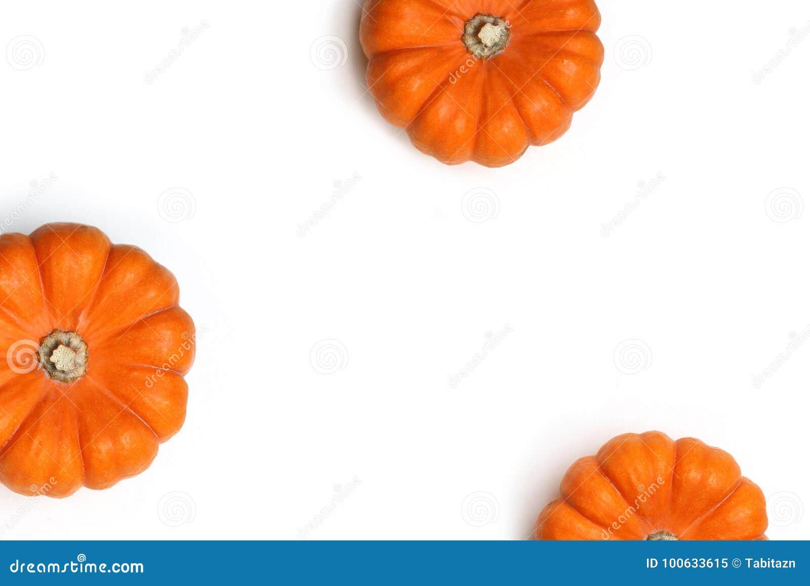 Herbstrahmen gemacht von den orange Kürbisen lokalisiert auf weißem Hintergrund Fall-, Halloween- und Danksagungskonzept styled