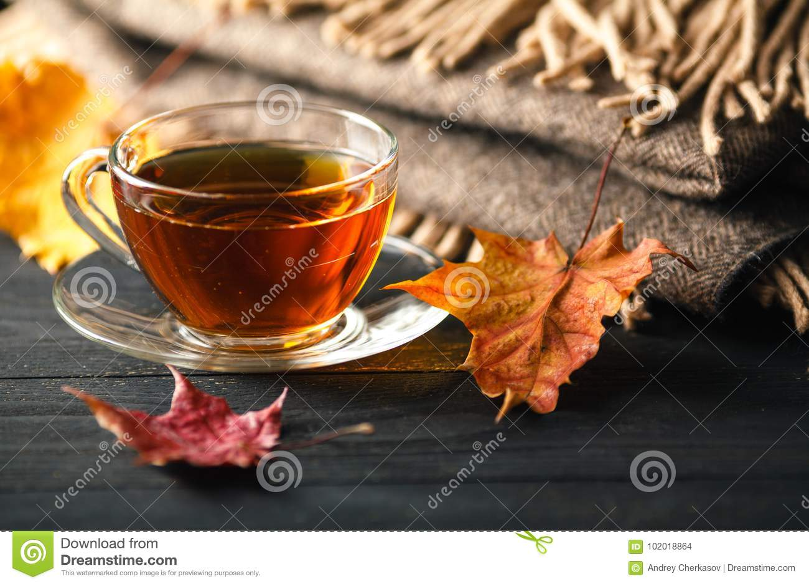 Herbststillleben mit Tasse Tee, Plaid und Blätter auf hölzernem Ba