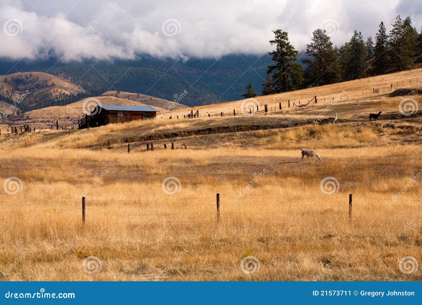 Herdade em Montana.