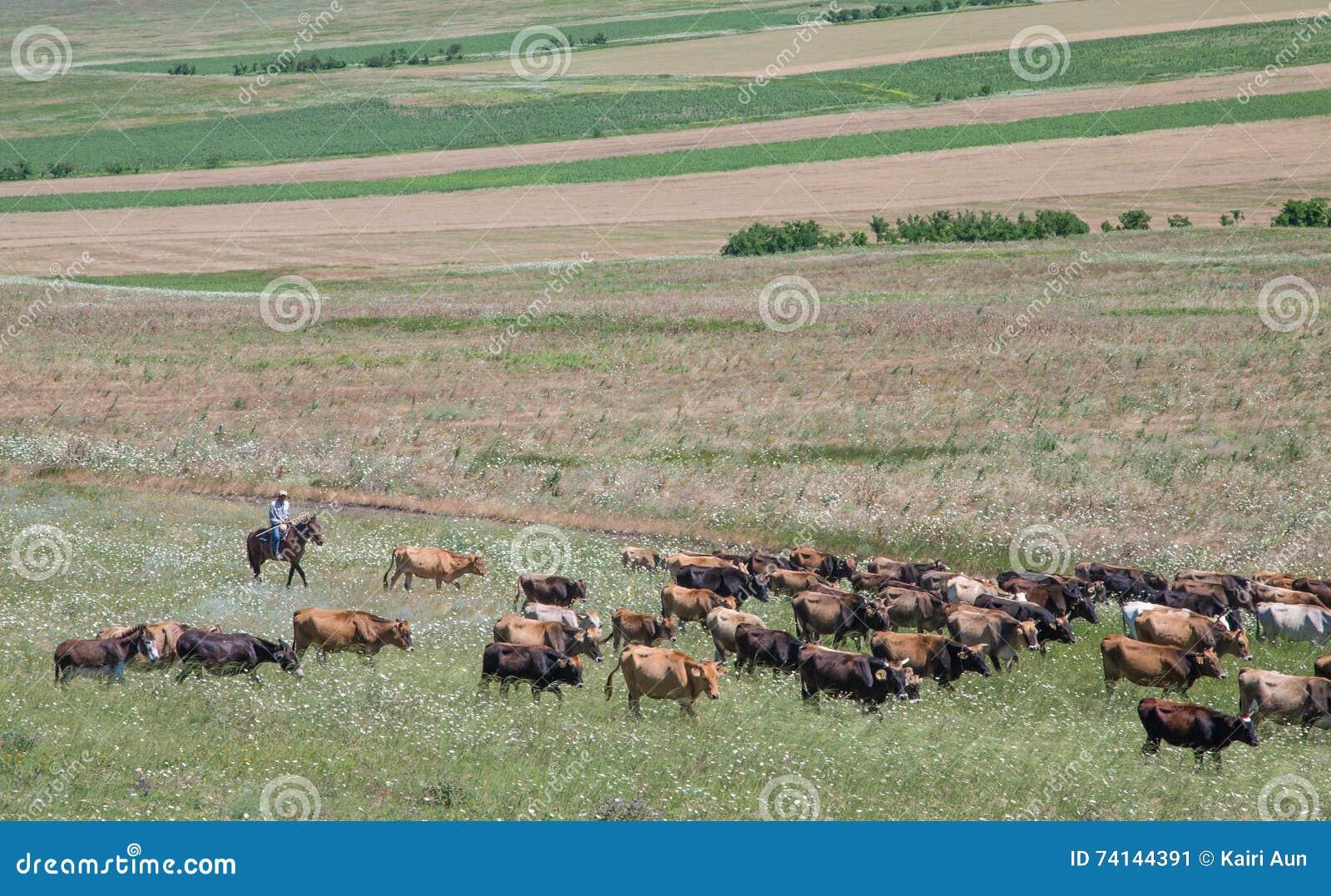 Herder της Γεωργίας