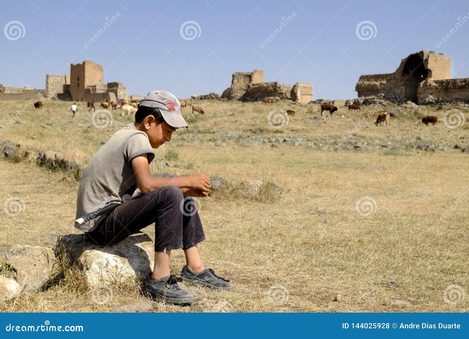 Herdersjong geitje die op de te weiden koeien wachten