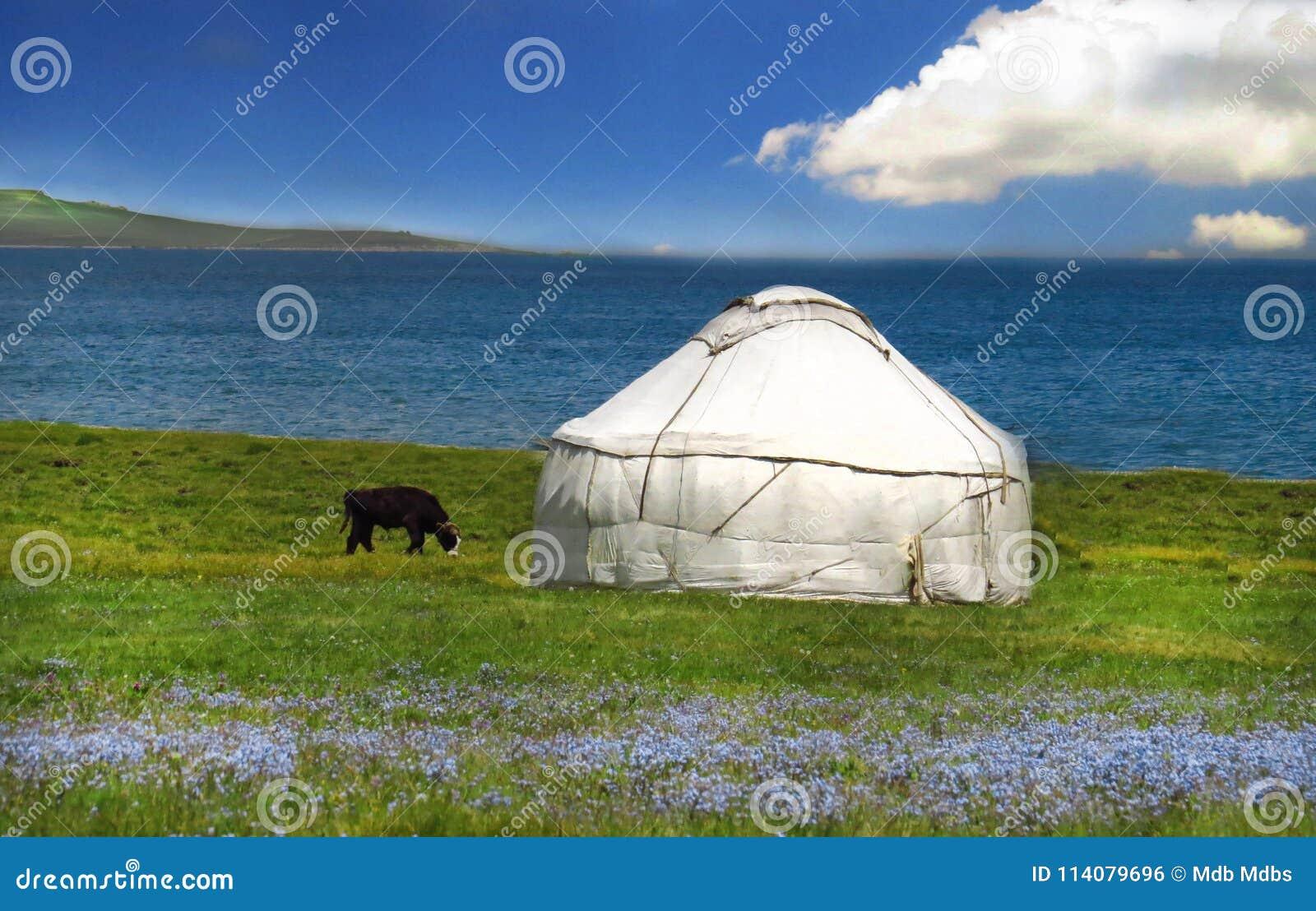 Herderstent Yurt Met Blauwe Bloemen, De Bergscène Van