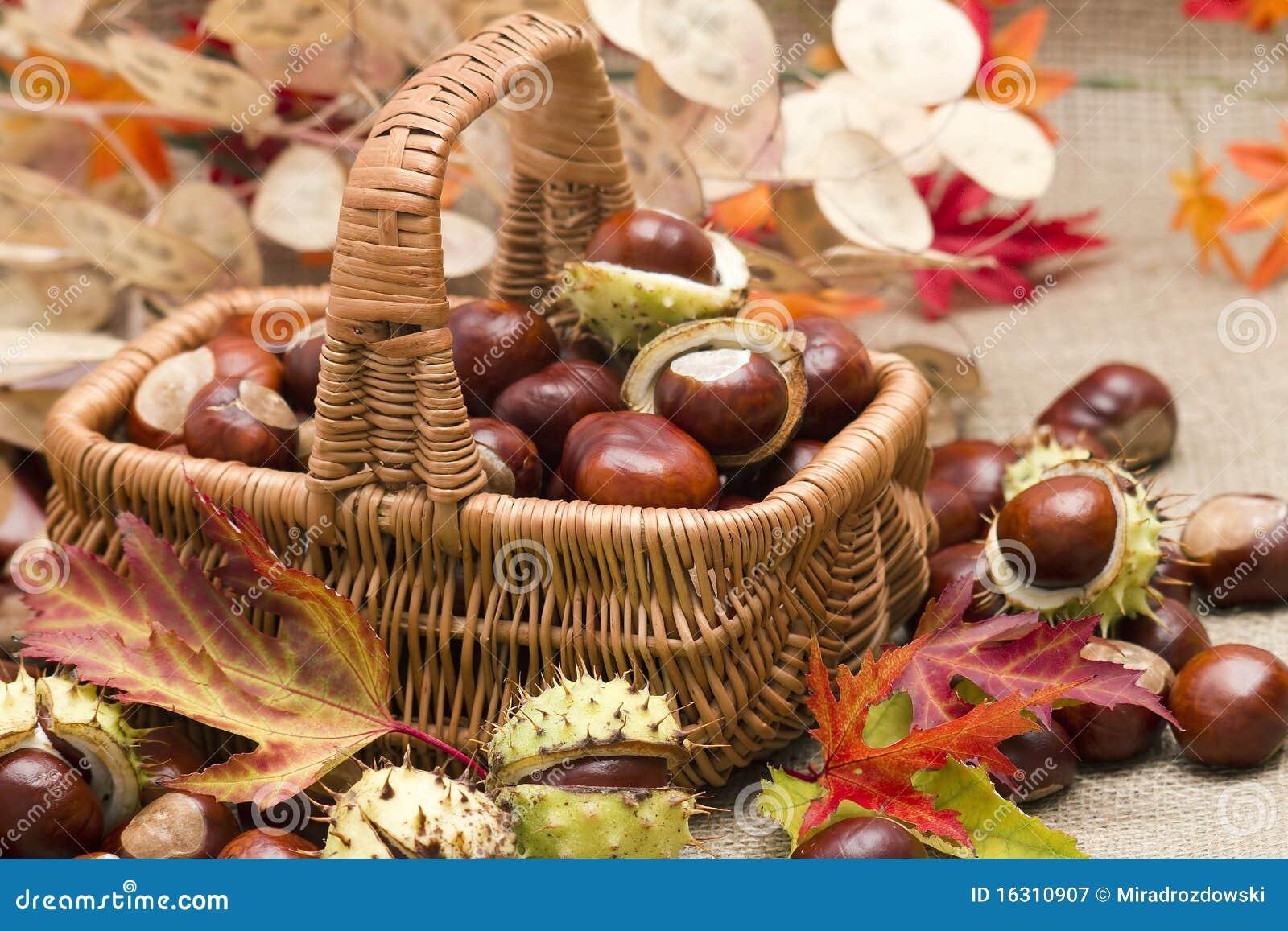 Herfst decoratie stock afbeelding afbeelding bestaande for Herfst decoratie